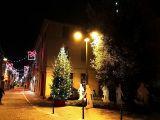 Villaggio di Natale: laboratori creativi, addobba l'albero e pensieri positivi