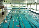 Notte irrequieta, vandali anche in piscina