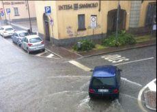 alluvionec.JPG