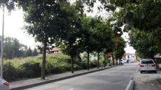 rancatebuio (1).jpg
