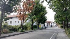 rancatebuio (4).jpg