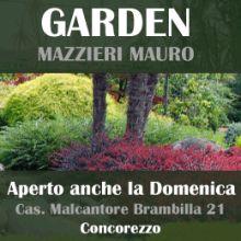 mazzieri2.gif